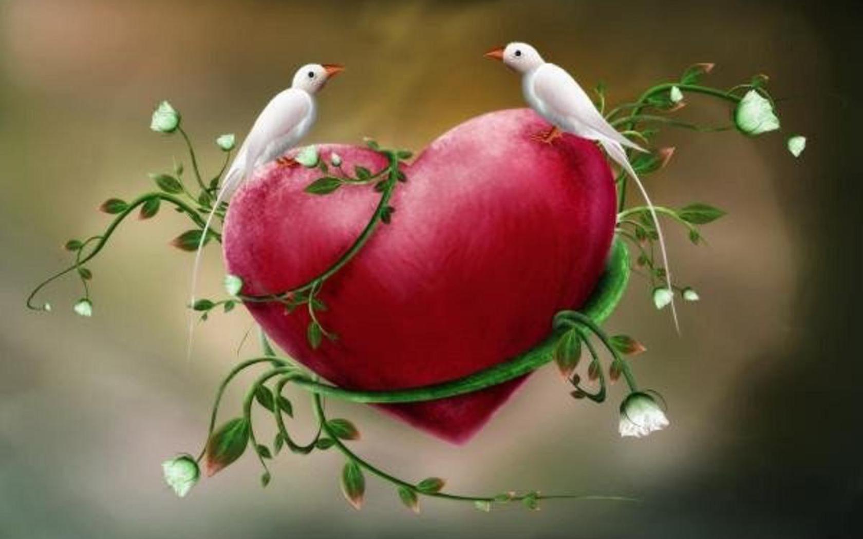 Le coeur est un oiseau Le petit monde de Mini-F?e