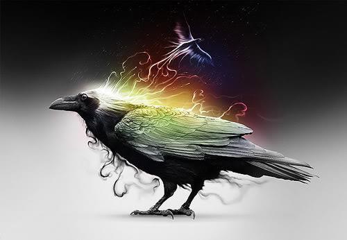 le corbeau oiseau aux milles symboles le petit monde de mini f e. Black Bedroom Furniture Sets. Home Design Ideas